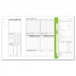Cartellina matricolare dipendenti con tasca prestampata - cartoncino - 32,5x25,5 cm - avorio